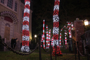 PHOTO_ Peppermint Path 2