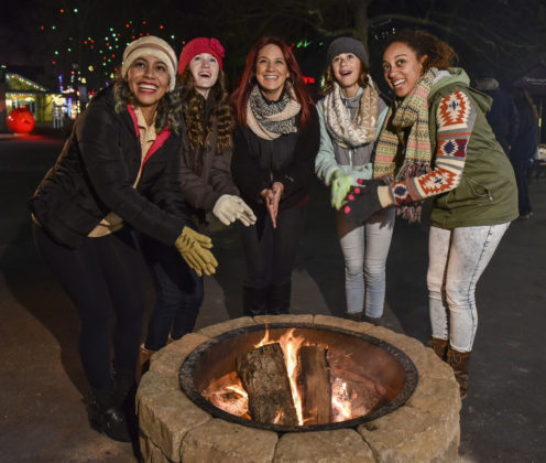 Holiday in the Park - Holiday Fire Pits in Holiday Memories